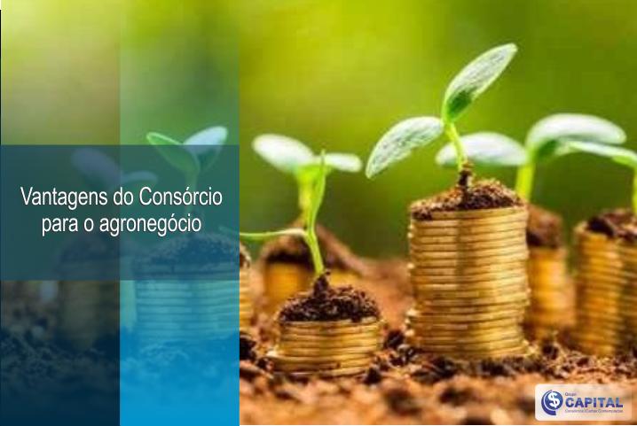 Vantagens do Consórcio para o agronegócio │ Grupo Capital DF